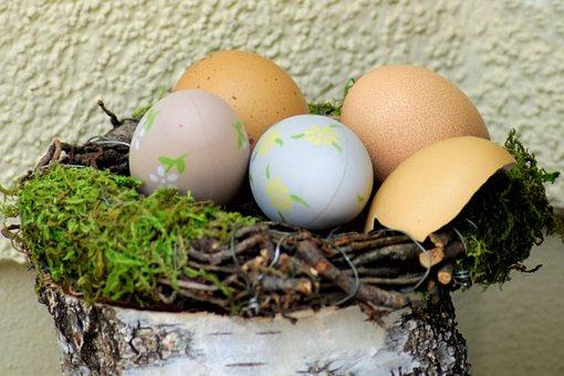 Egg, Food, Easter, Nature, Eggshell