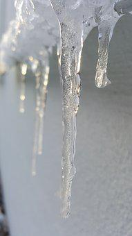 Icicle, Wet, Cold, Frost, Water, Purity, Ice, Melt