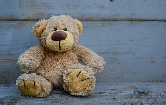 Bear, Stuffed, Teddy, Toy, Animal, Soft, Cute, Happy
