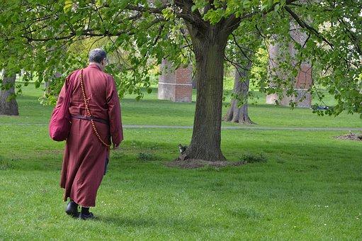 Tree, Grass, Lawn, Park, Outdoors, Buddhist Monk