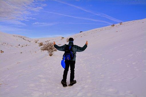 Snow, Winter, Adventure, Outdoors, Fun, Victory