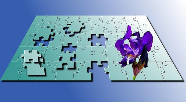 Puzzle, Blue, Iris, Color, Plant, Wallpaper, Teasers