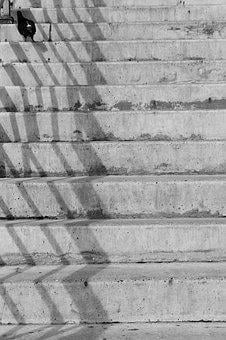 Ladder, Bird, Dove, No One, Stairs, Patio, Yard