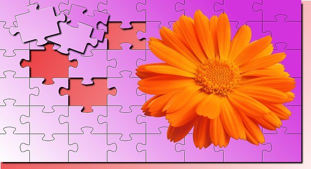 No Person, Color, Wallpaper Puzzle, Texture, Flower