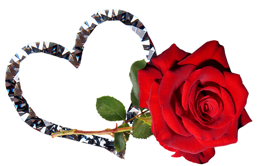 Rose, Red, Flower, Valentine, Romantic