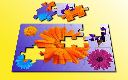 Wallpaper, Vector, Color, Flower, Fun Activities
