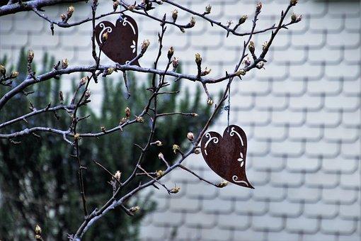 Nature, Decoration, Garden, Heart, Metal