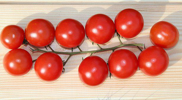 Eating, Tomato, A Vegetable, Sprig, Red
