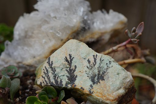 Nature, Outdoors, Rock Garden, Succulents, Crystals