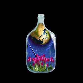 Composing, Bottle, Container, Glass, Liquid, Flowers