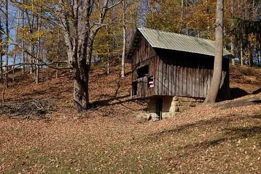 Wood, Nature, Tree, Outdoors, Barn, Springhouse
