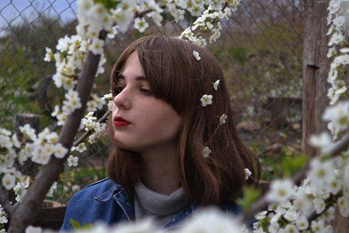 Nature, Flower, Tree, Outdoors, Lovely, Park, Summer
