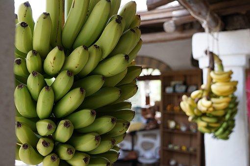 Banana, Fruit, Grow, Market, Food, Tropical