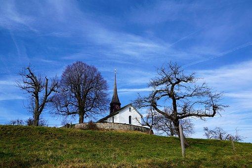 Tree, Landscape, Grass, Sky, Nature, Wood, Field, Land