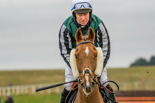 Horse, Race, Equestrian, Jockey, Thoroughbred