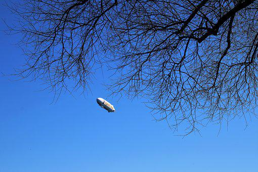 Zeppelin, Tree, View, Sky, Nature, Branch