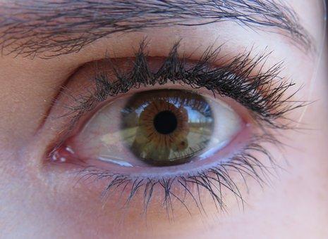 Eyelash, Eyeball, Eyebrow, Mascara, Face, Woman, Girl