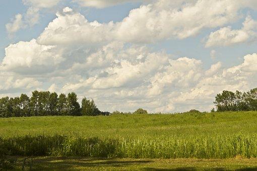 Sky, Countryside, Hay Meadow, Field, Rural, Summer
