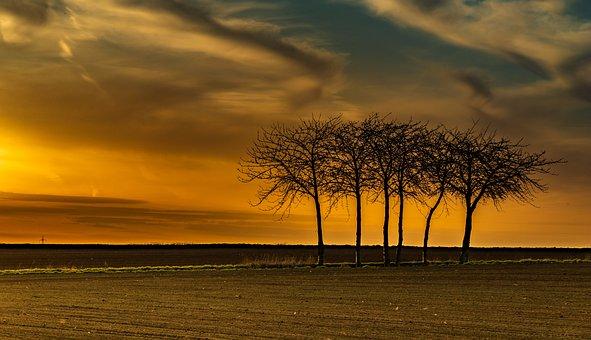 Sunset, Dawn, Sun, Nature, Dusk, Sky, Landscape