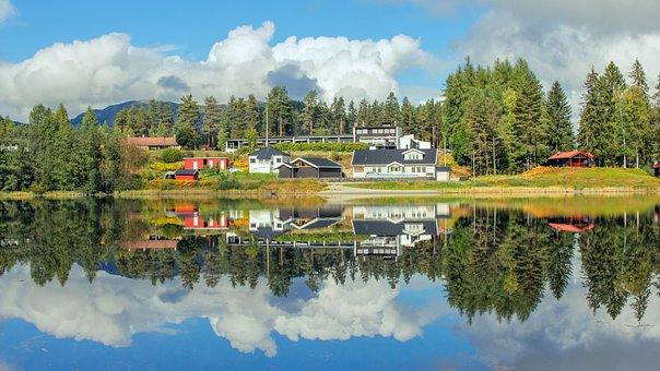 Water, Nature, Reflection, Lake, Tree, Norway, Amazing
