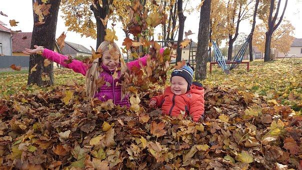 Autumn, Deciduous, Avar, Brown Leaves, Autumn Leaves