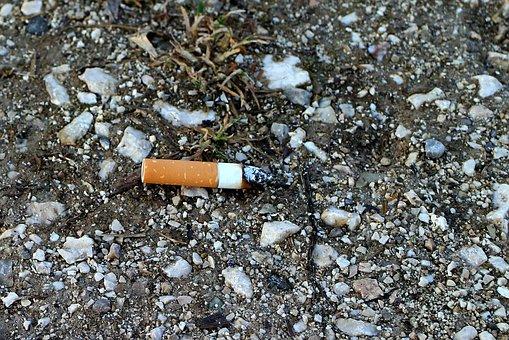 Cigarette Butt, Cant, Cigarette, Stub, Cigarette End