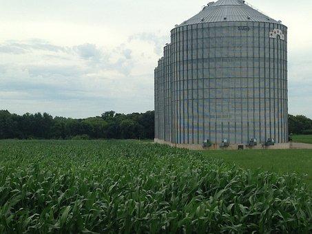 Grain Bin, Iowa, Bin, Grain, Agriculture, Farming