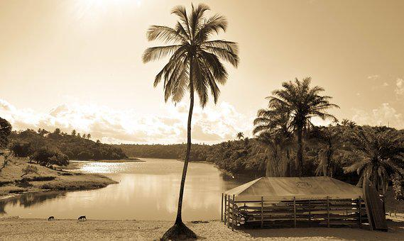 Best Place, Leisure, Field, Place, Landscape, Lake