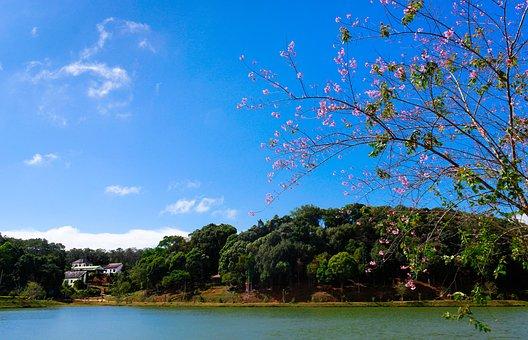 Lake, Landscape, Beautiful, Scene, Nature, Sky, Nobody