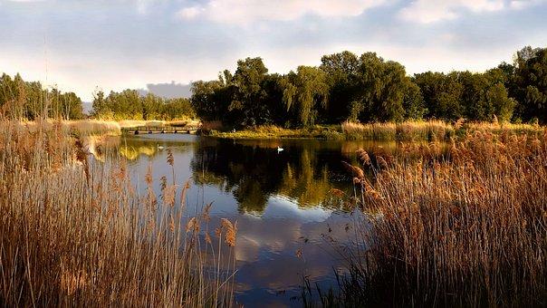 Sunset, Dusk, Landscape, Lake, Waters, Mirroring