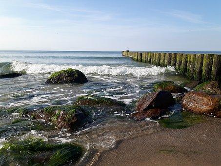 Waters, Coast, Sea, Landscape, Beach, Wave, Surf