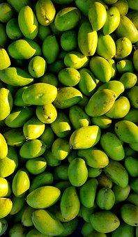 Green, Fresh, Picked, Mango, Bitter, Batch, Food