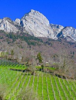 Switzerland, Sargans, Gonzen, 1830m, Nature, Mountain