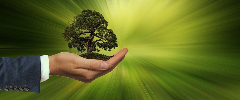 Sustainability, Hand, Keep, Tree, Energy, Globe