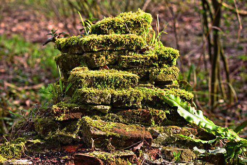 Stones, Moss Grown, Old Stones, Grown Over, Wall