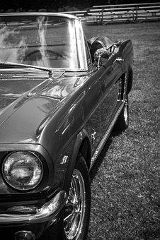 Car, Vehicle, Transportation System, Headlight, Classic