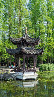Nature, Wood, Tree, Waters, Summer, Building, Pavilions