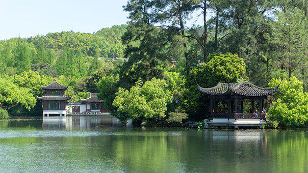 Nature, Waters, Wood, Tree, Summer, Pavilions