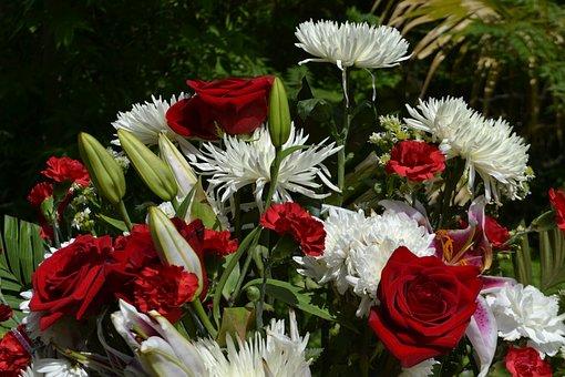 Roses, Bouquet, Life, Living, Creation, Flower, Flora