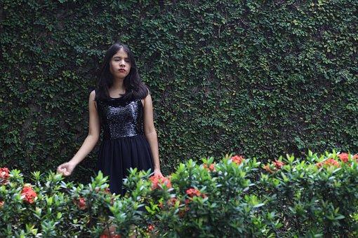 Flower, Garden, Nature, Summer, Plant, A Living Fence
