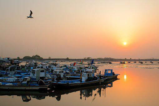 Sea, Sunset, Mentholatum Muzzle, Republic Of Korea