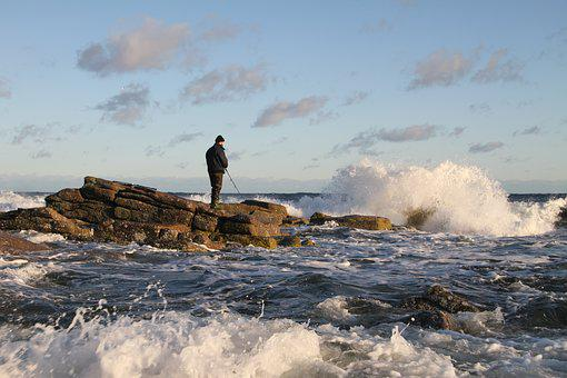 Sea, Sea Trout Fishing, Sea Trout, Coast, Wave