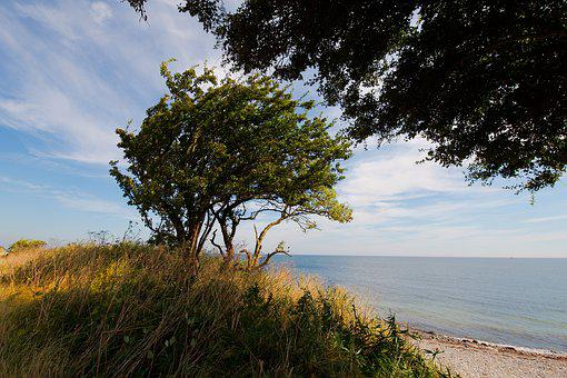 Nature, Landscape, Tree, Panorama, Sky, Summer, Travel