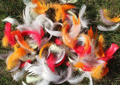Feathers, Colorful, Spring, Nature, Color, Lightness