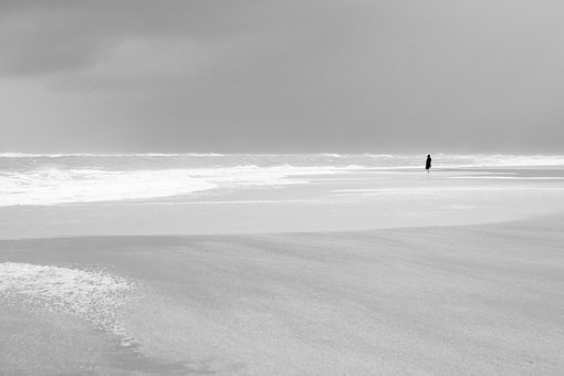 North Sea, Forward, Wind, Nature, Waters, Fog