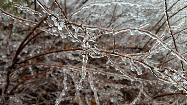 Nature, Frost, Winter, Cold, Pattern, Frozen, Freezing