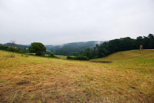Landscape, Nature, Panorama, Grass, Tree, Hill, Field