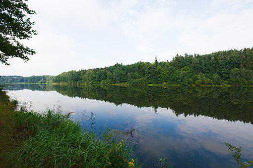 Nature, Waters, Landscape, Tree, Lake, River, Sky