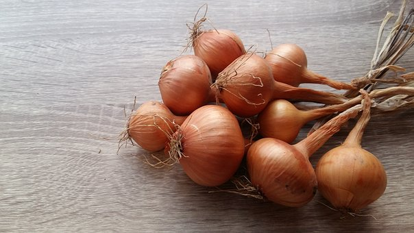 Onion, Recipes, Food, Kitchen, Background, Ingredients