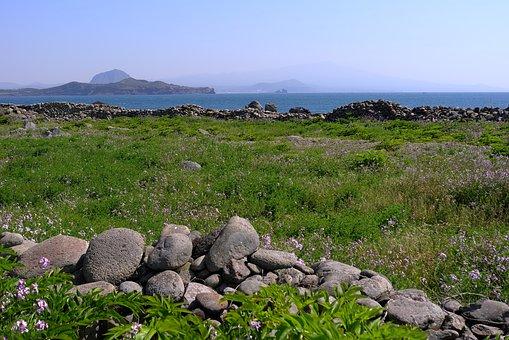 Grass, Nature, Scenery, S, Panorama Of, Panorama